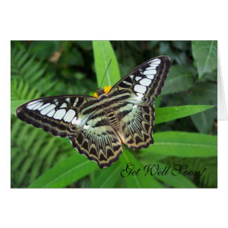Get Well Soon Butterfly Note Card