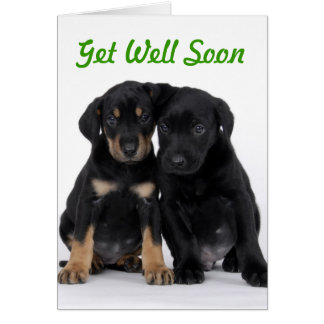 Get Well Soon - Puppy Style Greeting Card