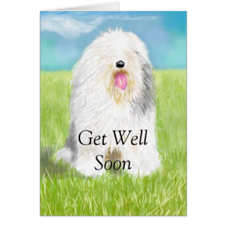 Get Well Soon with Sheep Dog Card
