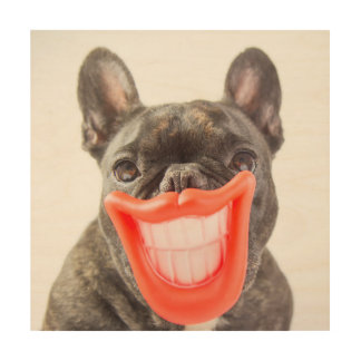 Getty Images | A Smiling Dog Wood Print