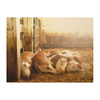 Getty Images | Snuggling Pigs Wood Wall Decor