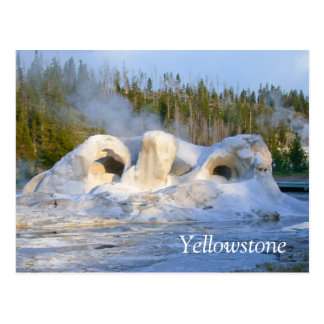 Geyser at Yellowstone National Park Postcard