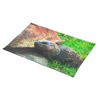 Giant Aldabra Tortoise Grunge, Kansas City Zoo Placemat