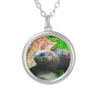 Giant Aldabra Tortoise Grunge, Kansas City Zoo Silver Plated Necklace