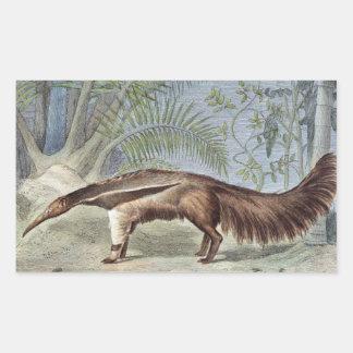 Giant Anteater Wildlife Illustration Rectangular Sticker