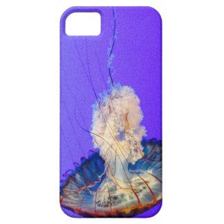 Giant Jellie iPhone 5 Case