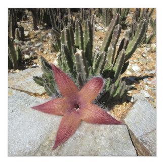 Giant Starfish Cactus 13 Cm X 13 Cm Square Invitation Card