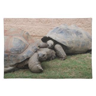 giant tortoises placemat