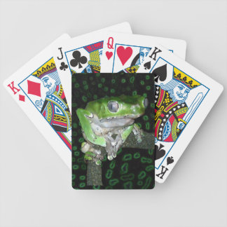 giant waxy monkey tree frog playing cards