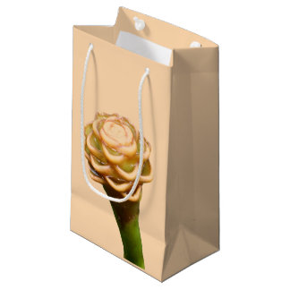 Gift Bag - Beehive Ginger