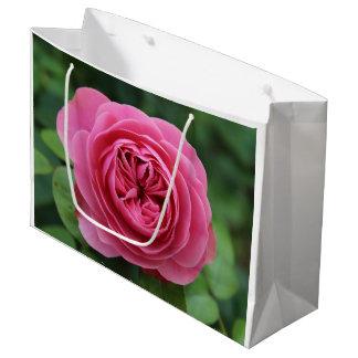 Gift Bag - Large, Brilliant Macro Pinks