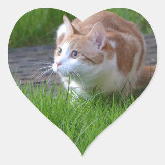 Ginger Cat Watching Heart Sticker