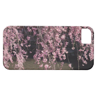 Gion, Kyoto Prefecture, Japan iPhone 5 Cover