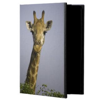Giraffa Camelopardalis Case For iPad Air