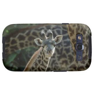 Giraffe calf with giraffes samsung galaxy SIII case