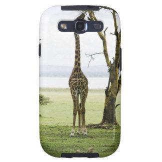Giraffe in Kenya, Africa Galaxy SIII Covers