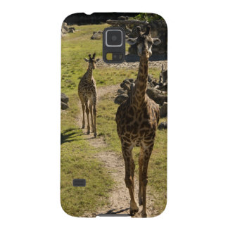 Giraffe Mom and Baby Calf Case For Galaxy S5