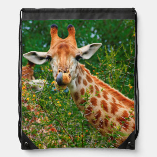 Giraffe Portrait, Kruger National Park Backpacks