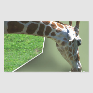 Giraffe Snack Rectangular Sticker