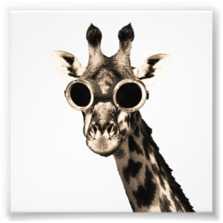 Giraffe With Steampunk Sunglasses Goggles Art Photo