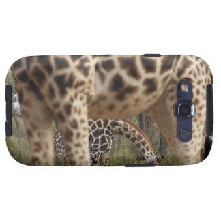 Giraffes 2 samsung galaxy SIII cases