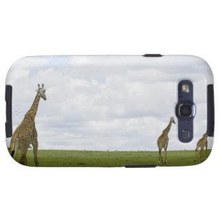 Giraffes in Kenya, Africa Galaxy SIII Case