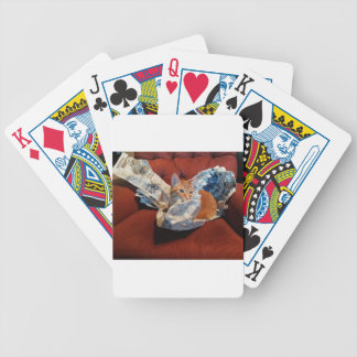 Gizmo Stopping The Bad News Bicycle Playing Cards