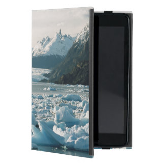 Glacial Icebergs Cover For iPad Mini