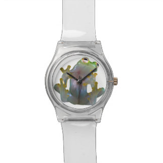 Glass Frog Watch