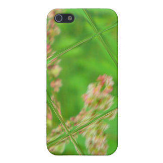 Glass Garden Fantasy Case For iPhone 5/5S