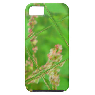 Glass Garden iPhone 5 Case