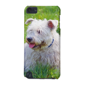 Glen of Imaal Terrier dog ipod touch 4G case