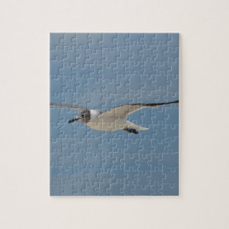 Gliding Laughing Gull Jigsaw Puzzle