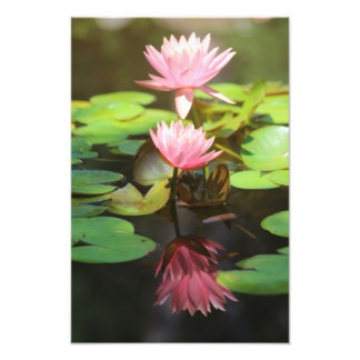 Glorious Reflections Photographic Print