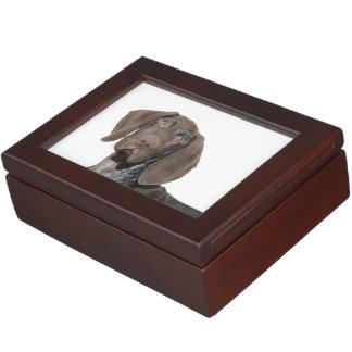 Glossy Grizzly Keepsake Box