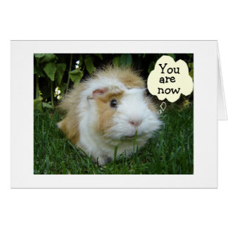 GLOUTING GERBIL IS NOW YOUNGER THAN FRIEND CARD