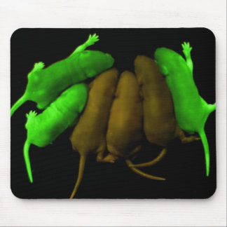 Glowing Mice Mouse Pad