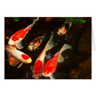 Go Fish Card