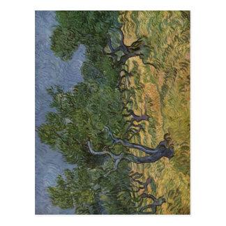 Gogh, Vincent van Olivenhain 1889 Technique ?l auf Postcards