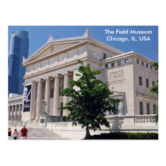 Going to the Field Museum Postcard