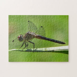 Gold Dragonfly Perching Jigsaw Puzzle
