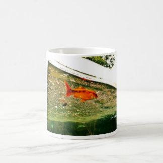 gold fish mug