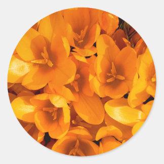 Gold in the garden round sticker