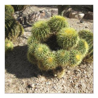 Golden Barrel Cactus 13 Cm X 13 Cm Square Invitation Card