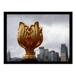 Golden Bauhinia Square Postcard