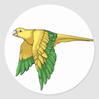 Golden Conure Products Classic Round Sticker