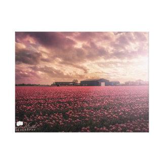Golden houre in Rotterdam Landscape Single Canvas