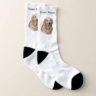 Golden labrador dog 1