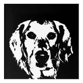 Golden Retriever Black & White Acrylic Wall Art