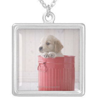 Golden Retriever in Bucket Silver Plated Necklace